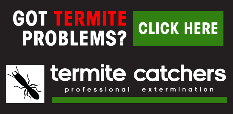 Termite Catchers